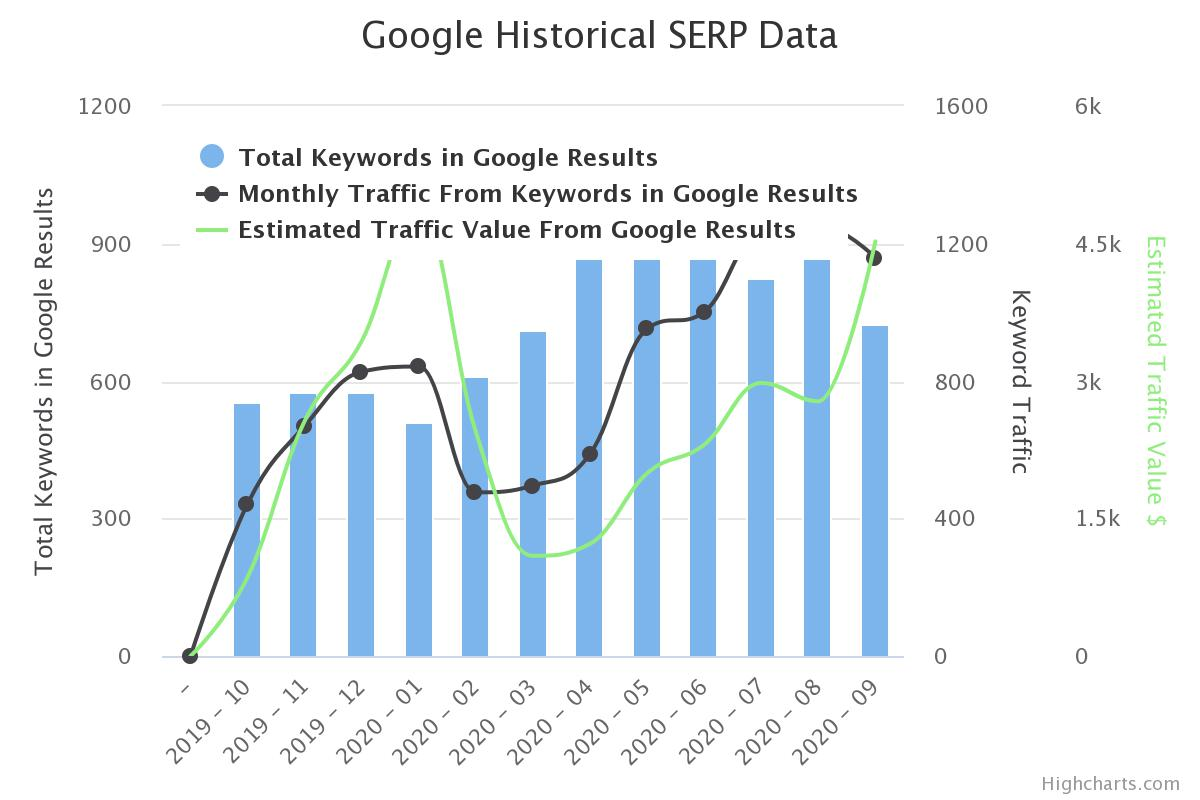 Medical SEO Results